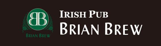 IRISH PUB BRIAN BREW